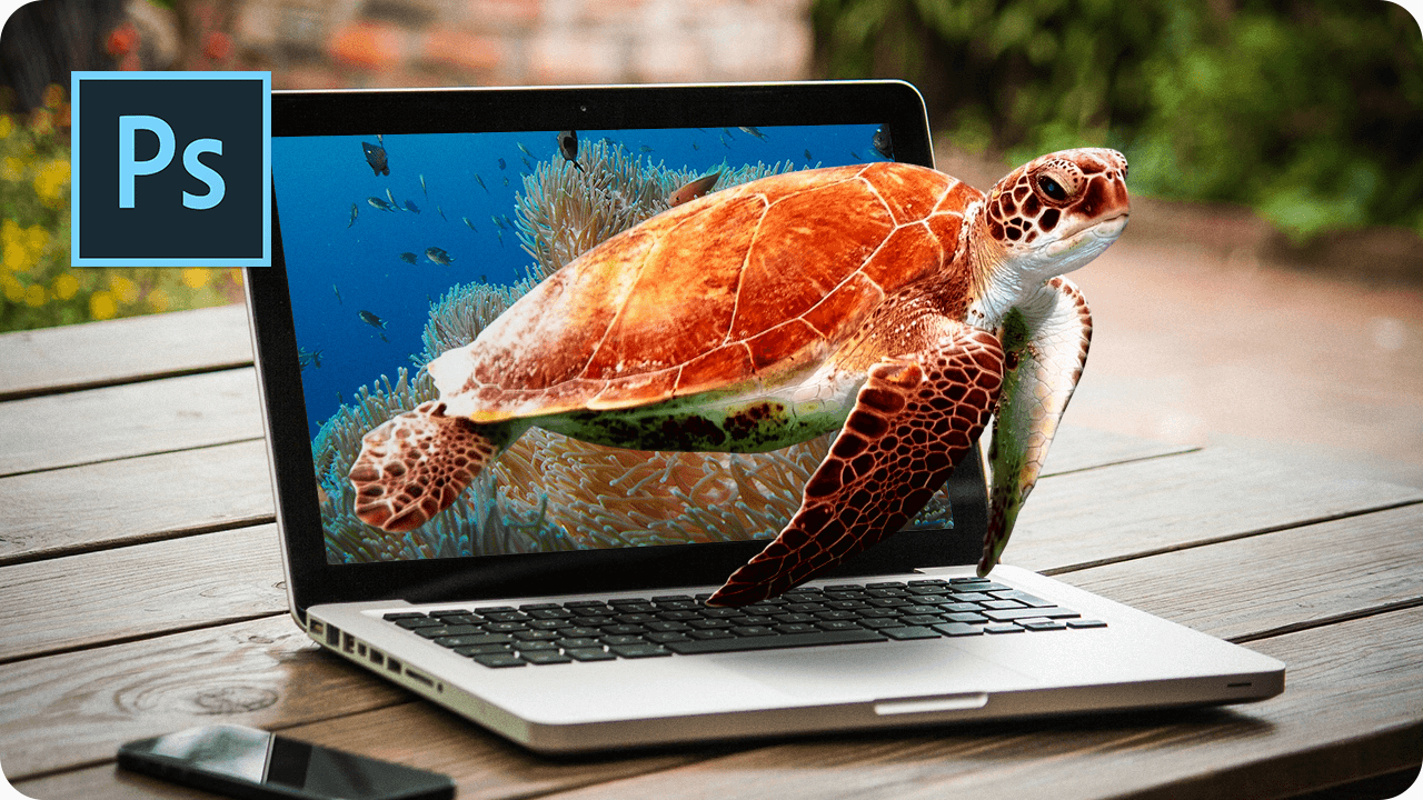 写真を加工する!パソコン画面から飛び出したウミガメ
