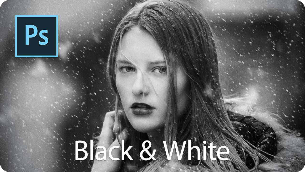 【色調補正】カラー写真をクールなモノクロにする【白黒】