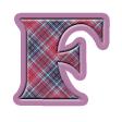 タータンチェック・type F