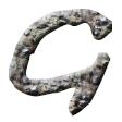 礫岩・タイプS