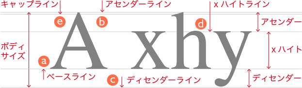 小文字の「x」を基準にした「x ハイト」