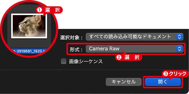 [ 形式 ] に [ Camera Raw ] を選択