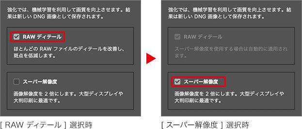 [ RAW ディテール ] 選択時 → [ スーパー解像度 ] 選択時
