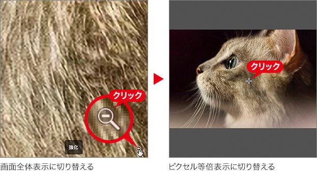 画面全体表示に切り替える → ピクセル等倍表示に切り替える