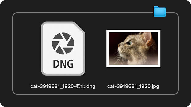 DNG 形式の画像ファイルを自動作成