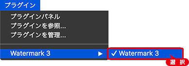[ Watermark 3 ] を選択