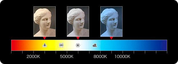 光源と色温度の概念図