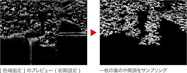 [ 色域指定 ] のプレビュー ( 初期設定 ) → 一枚の葉の中間調をサンプリング