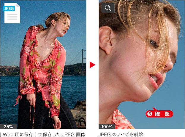 [ Web 用に保存 ] で保存した JPEG 画像 → JPEG のノイズを削除