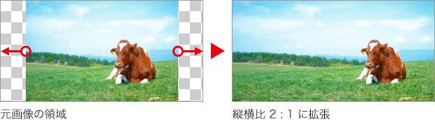 元画像の領域 → 縦横比率 2:1 に拡張