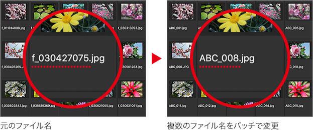 元のファイル名 → 複数のファイル名をバッチで変更