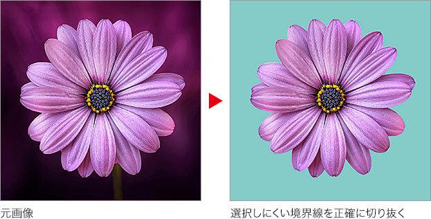 元画像 → 選択しにくい境界線を正確に切り抜く