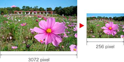 横位置の画像の長辺が3072pixel