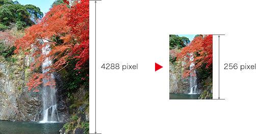 縦位置の画像の長辺が4288pixel