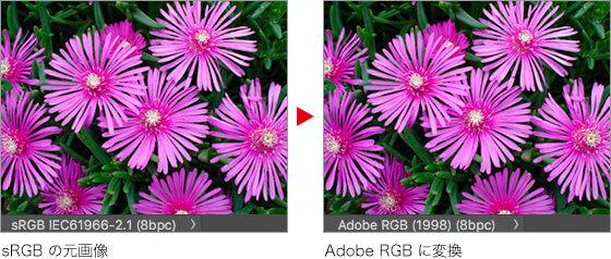 sRGB の元画像 → Adobe RGB に変換