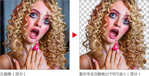 元画像 ( 部分 ) → 髪の毛を自動検出で切り抜く ( 部分 )