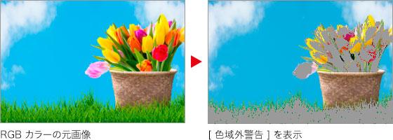 RGB カラーの元画像 → [ 色域外警告 ] を表示