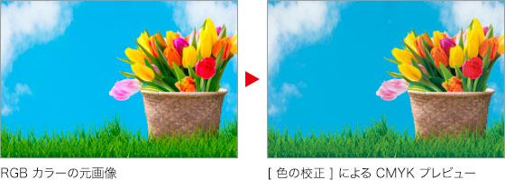 RGB カラーの元画像 → [ 色の校正 ]による CMYK プレビュー